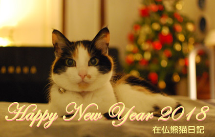 Happy New Year '18