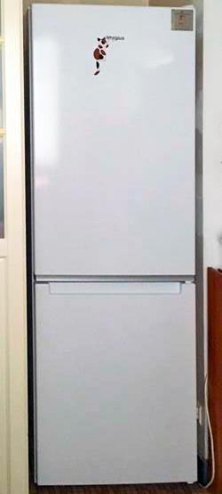 冷蔵庫買い替え!
